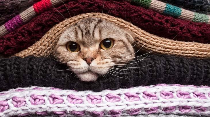 Cum ne pregatim casa pentru sezonul rece?